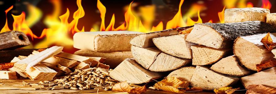 Le bois de chauffage : une solution économique et écologique