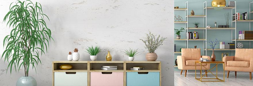 decorer sa maison avec des plantes vertes